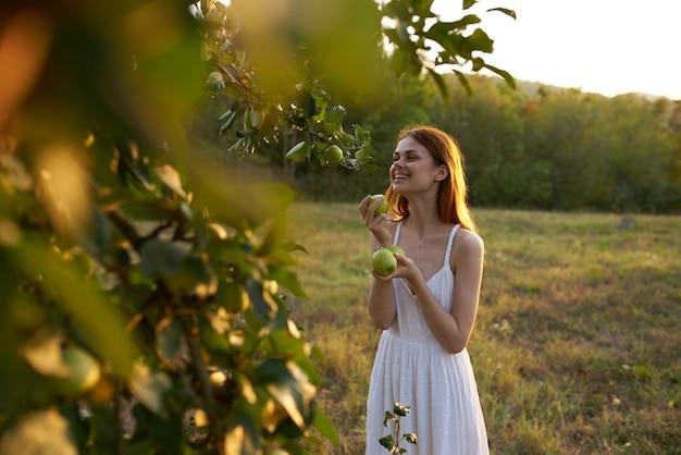 女性は野原の自然の夏の新鮮さで木からリンゴを選びます