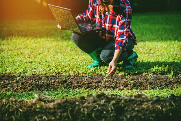 Woman plant vegetables in the garden