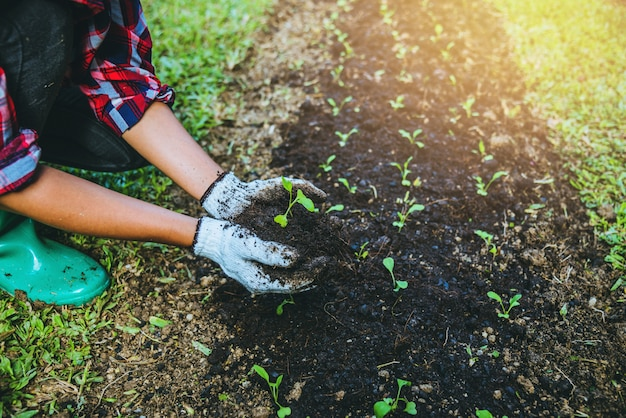 Woman plant vegetables
