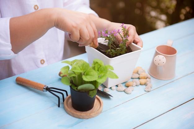 Женщина сажает цветы в цветочный горшок на деревянный стол