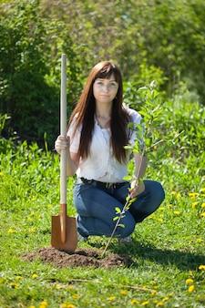 Женщина посадка дерево