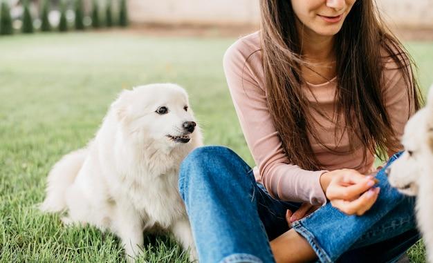Женщина играет с милыми собаками