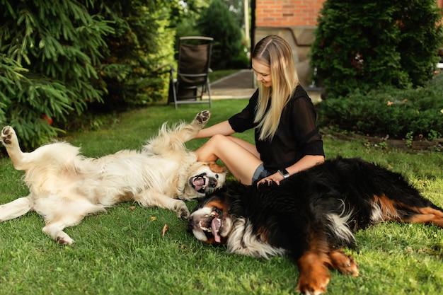 Женщина играет с собакой лабрадор и зенненхунд на открытом воздухе в зеленом парке