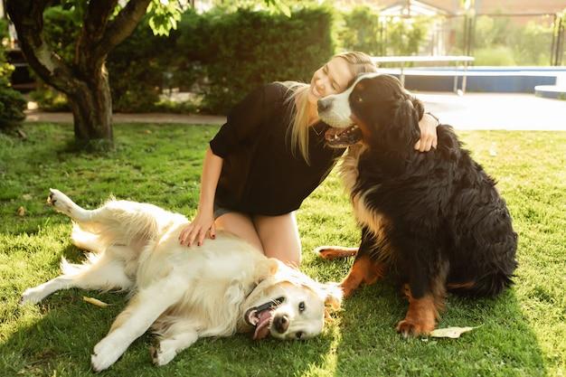 Женщина играет с собакой лабрадор и зенненхунд на открытом воздухе в парке