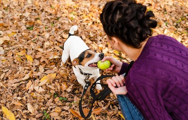 Женщина играет со своей милой собакой