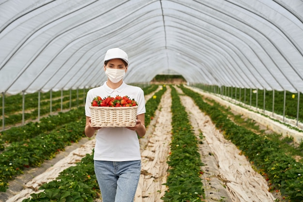 Woman posing at strawberry plantation with basket in hands
