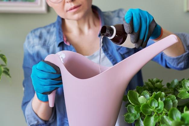 女性は水でじょうろに液体ミネラル肥料を注ぎます。屋内鉢植えの栽培と手入れ。趣味とレジャー、家庭菜園、観葉植物、アパートの都会のジャングル
