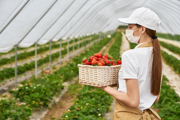 Woman in protective mask holding basket with strawberries