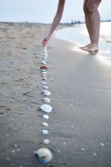選択的に焦点を当てて海岸の砂の上に貝殻を並べる女性