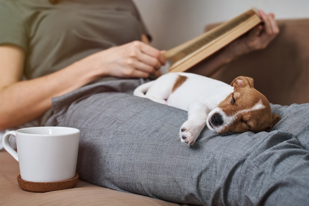 ジャックラッセル犬が付いている本を読んでソファーでリラックスした女性
