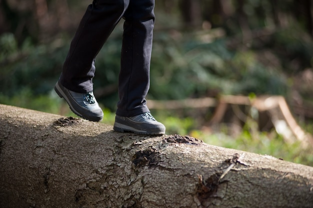 Woman's feet in sneakers walking on log in the forest