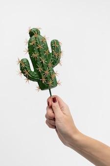 サボテンの形で木の棒にアイスクリームを保持している女性の手。
