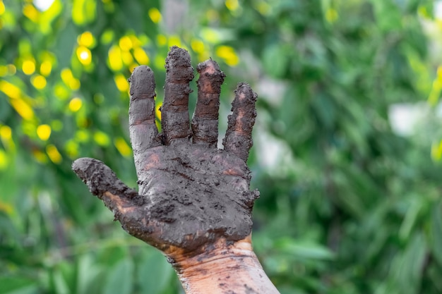 緑の葉を背景に沼の女性の手