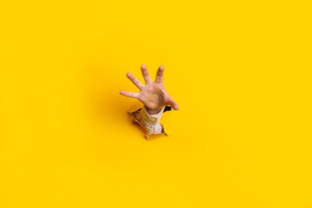 여자의 손을 뻗어 노란색 배경에 벽의 구멍에서 무언가를 잡습니다.