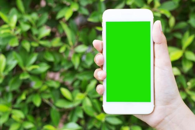 여자의 손은 녹색 화면 스마트 폰을 보여줍니다.