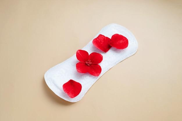 붉은 꽃이 있는 여성용 생리대. 여성의 월경과 여성의 건강에 대한 추상적인 사회적 개념.