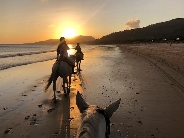 Woman selfie riding a horse on the beach