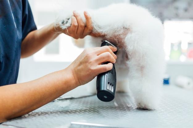 Женщина бреет белого пса