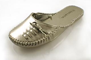 Woman shoe, shiny