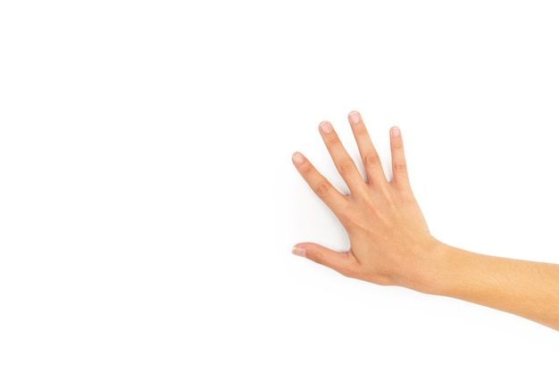 コピースペースと白い背景の上の彼女の手の甲を示す女性