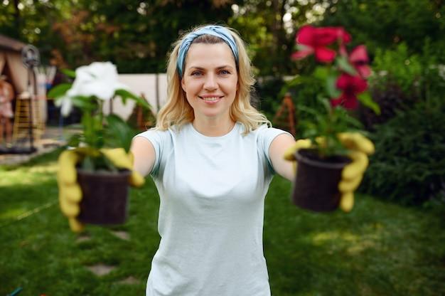 女性は庭の鉢に2つの花を示しています。女性の庭師は、屋外の植物、ガーデニングの趣味、花屋のライフスタイルとレジャーの世話をします