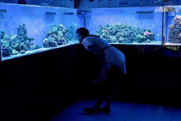 Woman silhouette watching aquariums with fish in oceanarium