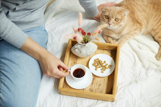 침대에 앉아 커피를 마시는 여자, 고양이 먹이주기