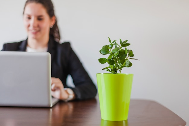 Woman sitting at table working and plant