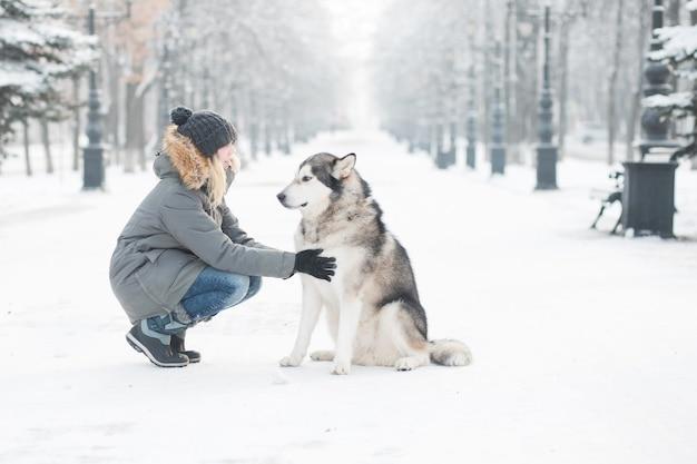 冬の街でアラスカンマラミュートと一緒に座っている女性。 。