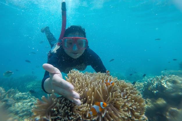 Woman snorkeling underwater with clownfish in coral reef sea at karimun jawa