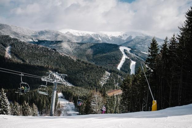 Женщина катается на лыжах, готовится к спуску по снежной трассе в карпатах. на фоне леса и горнолыжных склонов.