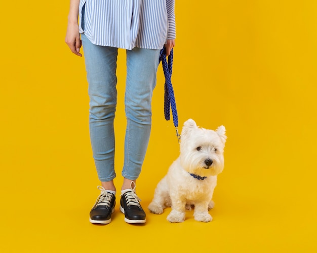 Woman standing next to her adorable dog