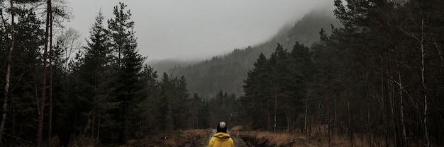Donna in piedi in una foresta nebbiosa