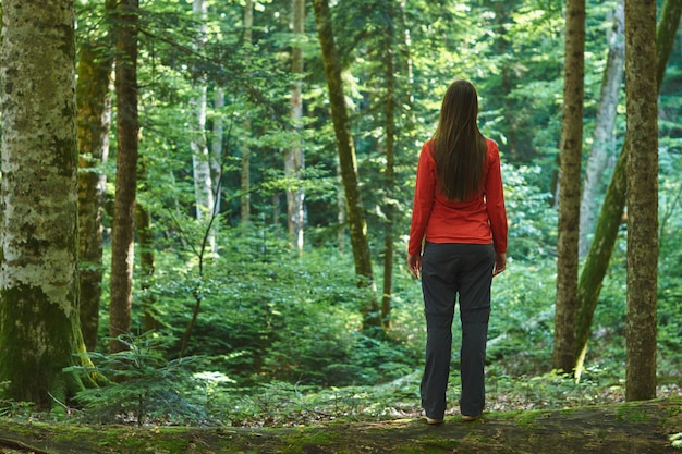 Woman stands in a confireous forest without a road. lost in the woods.