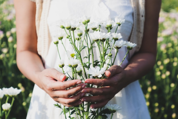 The woman stood holding many white chrysanthemum flowers in the flower garden