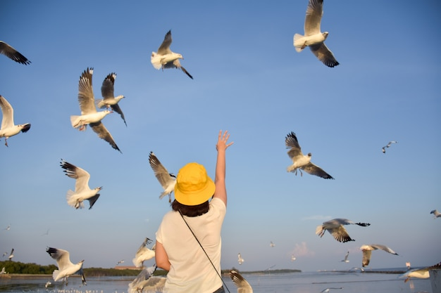 The woman stretched her hand to the sky with the seagull flying.