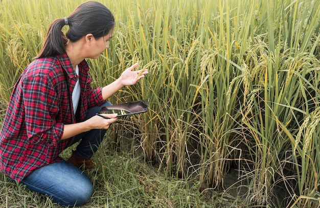 さまざまな植物を勉強している女性