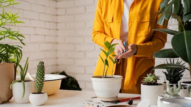 냄비에 식물을 돌보는 여자