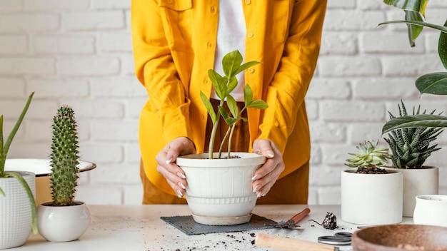 Женщина заботится о растении в горшке