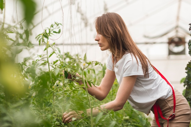 Woman taking care of plants in a greenhouse