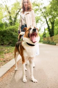 Женщина разговаривает со своей собакой на прогулке в парке