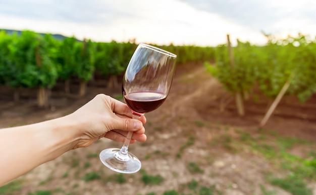 赤ワイン、背景にブドウ畑の試飲の女性。ブドウ園に対する赤ワインのグラス。