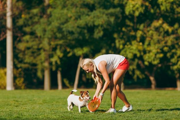 緑の草の上でそれを捕まえる小さな面白い犬にオレンジ色のフライングディスクを投げる女性。公園で屋外で遊ぶリトルジャックラッセルテリアのペット。野外で犬と飼い主。動きの背景の動物。