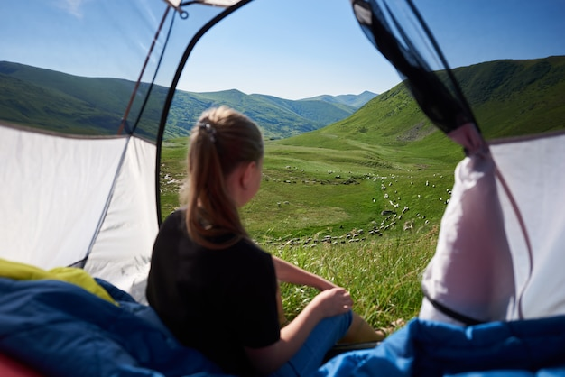 Woman tourist sitting in tent in the morning. focus on flock of sheep on alpine pasture