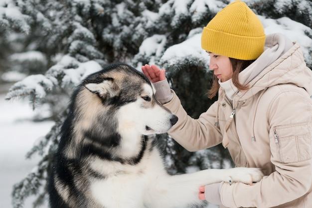 冬の森でアラスカンマラミュートを訓練する女性。閉じる。犬は前足を与えます。