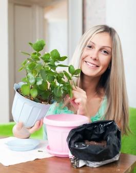 Женщина пересаживает горшках каланхоэ цветок
