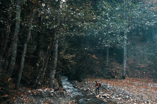 森の山の川の近くの女性旅行者が岸の秋の風景に座る