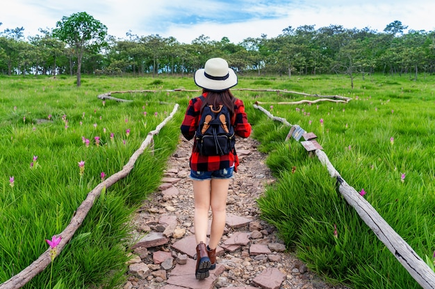 タイのクラシュー花畑を歩くバックパックを持つ女性旅行者。旅行のコンセプト。