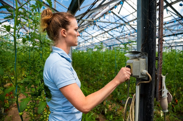 Woman turns the switch for lighting and watering in a greenhouse
