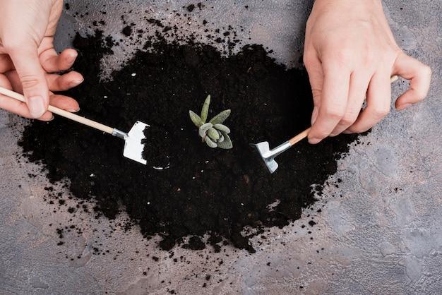 Woman using miniature gardening tools